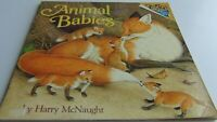 Animal Babies by Harry McNaught 1977 Paperback FREE FIRST CLASS Shipping!