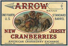 "RARE OLD ORIGINAL 1920'S INDIAN ""ARROW BRAND"" CRANBERRIES CRATE LABEL NEW JERSEY"