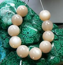 10 NATURAL SMOOTH ROUND CAT's EYE PEACH MOONSTONE BEADS 10mm