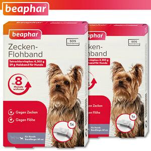 Beaphar 2 x Zecken-Flohband für kleine Hunde | weiß | 60 cm | 8 Monate wirksam