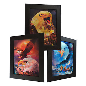 3 Dimension 3D Lenticular Picture American Bald Eagle Sunset Moon Preying Fly