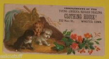 Young America Clothing House - Cute Puppies 1890s Color Ad Card  Nice SEE!