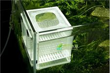 Fish Tank Hatchery Partitions Aquarium Breeding Breeder Soft Net + Suction Cups