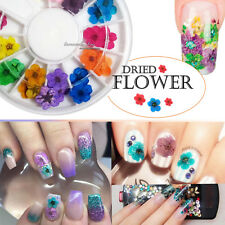 12 Color 3D Decoration Real Dry Dried Flower for UV Gel Acrylic Nail Art Tips