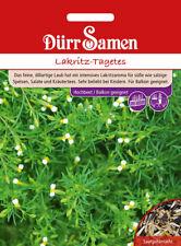 Dürr Samen - Lakritz-Tagetes