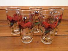 Vtg 5 High Ball Fowl Hunter Drinking Glasses Ring-Necked Pheasant Ducks Hunting