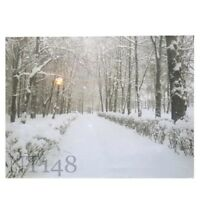 40×30×1.5CM CHRISTMAS DECORATION LIGHT UP LED CANVAS WALL ART PICTURE BRAND NEW.