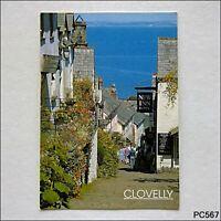 Clovelly Down-a-long Postcard (P567)