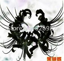 Rare! 2 Pcs Black Lycoris Bulbs, Bana Spider Lily Bulbs