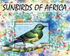 Tanzania-2014-Birds-Sunbirds
