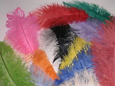 200 ASSORTED COLOURS IMPERFECT QUALITY  2NDS -DRABS 275-325MM  OSTRICH FEATHERS