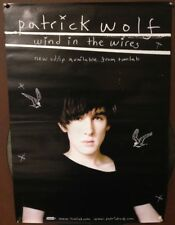 Patrick Wolf ‎– Wind In The Wires | 2005 | Releaseplakat | Promoposter