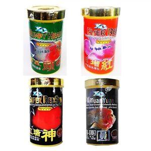 Xo Ocean Free Flowerhorn Cichlid Fish Food Humpy Head Ever Red Redsyn Xituanyuan
