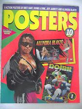 WWE / WWF POSTERS MAGAZINE VOL 10 BRET HART / ALLUNDRA BLAZE / DOINK & DINK L1