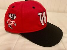 Wisconsin Badgers Red Bucky Badger Baseball Hat size 7 1/4