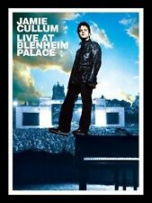 LIVE AT BLENHEIM PALACE USED - VERY GOOD DVD