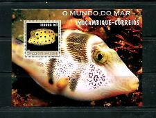 Mozambique  2002 #1677   fish marine sheet  MNH  E529