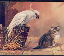 Cockatoo Parrot Bird Kicks Cat Out Of Basket,Adrienne Lester,Faulkner Postcard