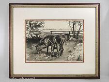 JUMENT ET SON POULAIN, dessin signé M. Basquin, 1950, encadré, cheval, horse