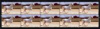 LIPIZZANER YEAR OF THE HORSE STRIP  OF 10 MINT VIGNETTE STAMPS 1