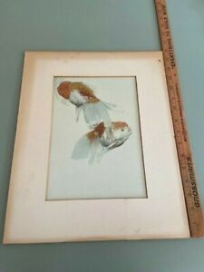 c1920s Japanese Hand Colored Print of Koi Goldfish 7.5 by 10.5""