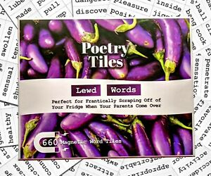 Poetry Tiles - 536 Dirty Words Word Magnets - Smut Adult Themed Kit for Poems