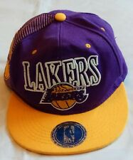 LA Lakers Mitchell   Ness Basketball Cap Snapback NBA Purple Hardwood  Classics 97beefb77ea7