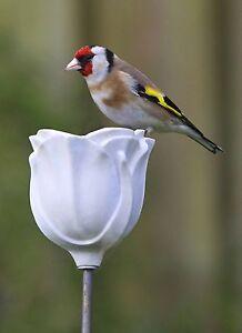 Ceramic wild bird feeder-Rose Bud design