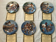 6 Natures Nursery Collectors Plates By Artist Joe Thornbrugh