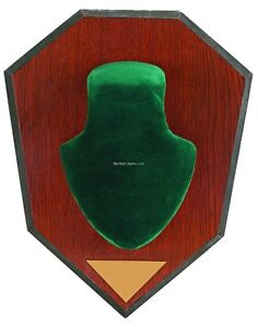 Allen Trophy Antler Mounting Kit w/Green Skull Cover & Engraveable Plaque 562
