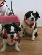 Dog French fancy dress Berret & scarf handmade for extra oo la la by Mrs Nibbles