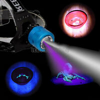 10W Dual XPE LED Fishing Headlight Zoomable Ultraviolet White 395Nm UV Headlamps