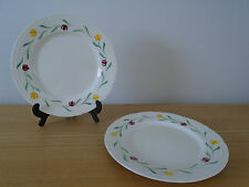 2 Barker Bros Royal Tudor Ware Hand Painted Red and Yellow Flower 25cm Plates