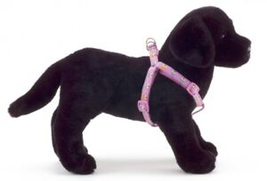 Douglas Paquette CUPCAKE Nylon Ribbon Adjustable Dog Harnesses