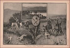 Rabbit Hunting Southern California, Greyhound Dogs, antique print, 1888