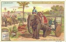 Liebig - The Elephant S701 (French) - As Beast of Burden