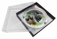Retrieving Labrador Montage Glass Paperweight in Gift Box Christmas Pr, AD-L20PW