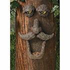 Bird Feeder Tree Face - Home Decor - Outdoor Garden - Gift Ideas -3 Pieces