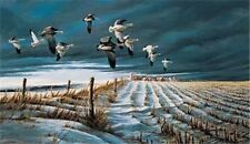 "Winter Snows By Terry Redlin Snow Goose Print Image Size 14"" X 8.75"""
