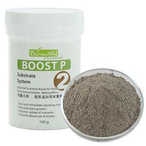 BorneoWild Boost P 100g Slow Release Nutrients Stimulate Plant Growth Aquarium