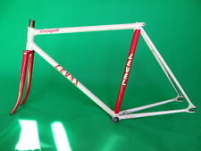 Level White / Red  Two Tone NJS Approved Keirin Frame Track Bike Fixed Gear