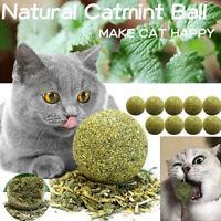 Pet Catnip Toys Edible Catnip Ball Safety Healthy Cat Mint Clean Teeth StomaRVA