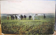 Montana Postcard Reps Starting Out On A Trip Horses Chas Morris Chinook M95 1908
