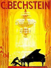 MUSIC CONCERT ADVERT BECHSTEIN PIANO PIANIST OPERA HOUSE ART POSTER PRINT LV2249