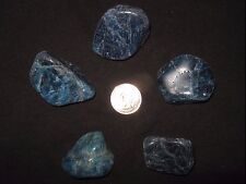 "1 Blue Apatite Tumbled Gemstone XL Sz. 1-1/2"" - 2"""