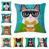 FUNNY CAT Cushion Covers! Cartoon Portrait Art Kitten Painting 45cm Gift UK