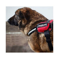 Side Bags IDC Power Harness, Universal Bags, Julius K9, Red, Blue, Black, Neon