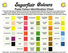 Sugarflair Concentrado Espectro Colorante Alimentario Pasta Gel 50 + Colores 25g