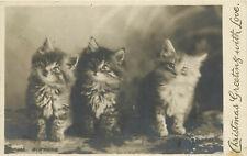 "RPPC Postcard Kittens Christmas Greetings ""Sisters"" Long haired Tabbies"