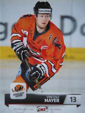 245 Vincenz Mayer Grizzly Adams wolfsburg del 2011-12